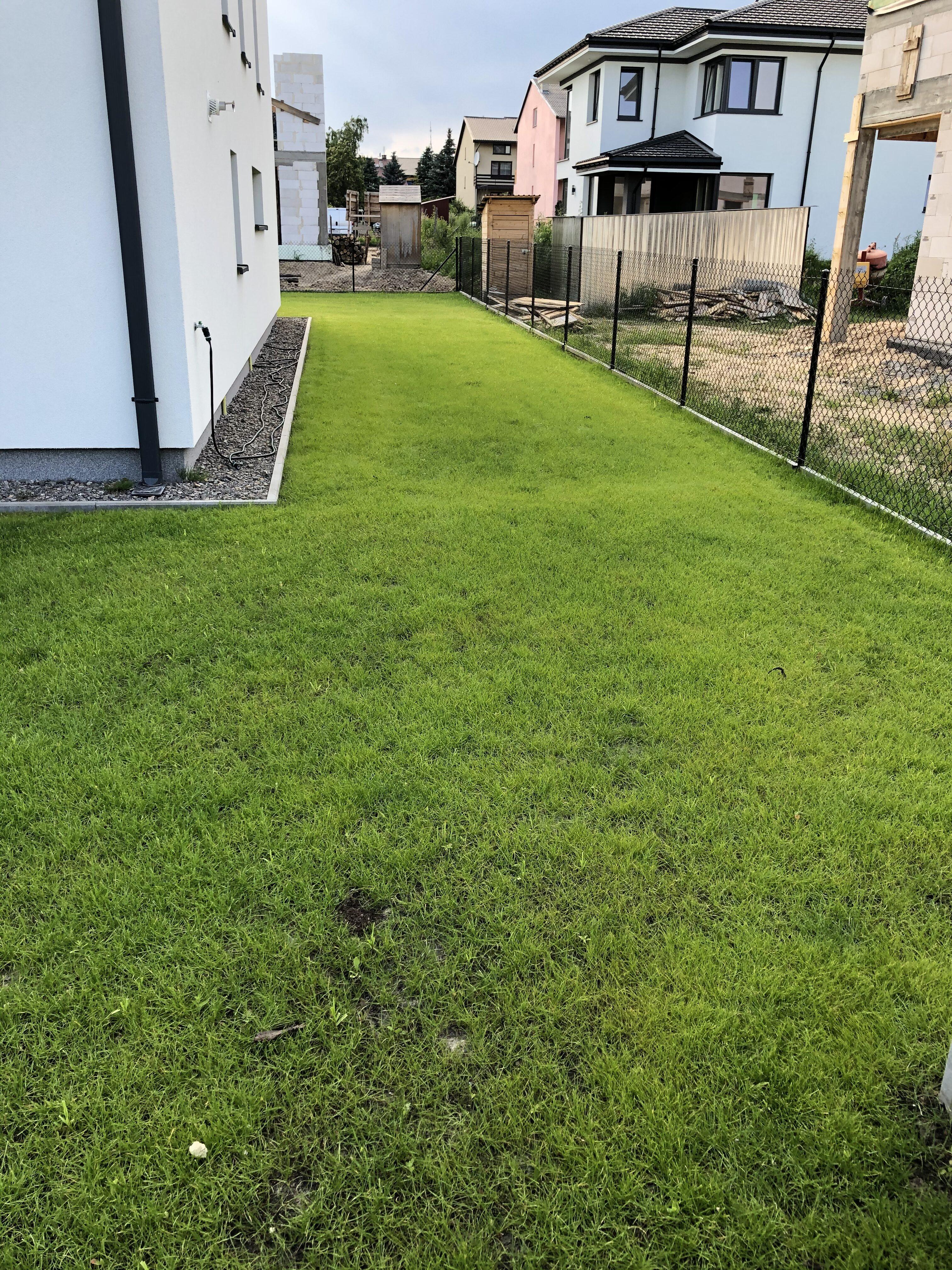 trawnik francuska
